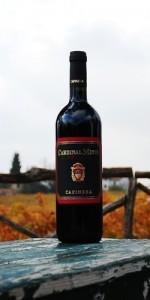 Cardinal Minio Marche Rosso IGT