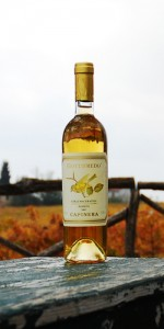 Gottifredo Colli Maceratesi DOC Passito