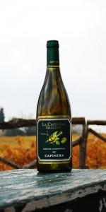 La Capinera Selezione Marche Chardonnay IGT