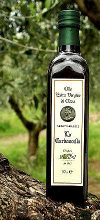 Olio extravergine di oliva monovarietale Carboncella