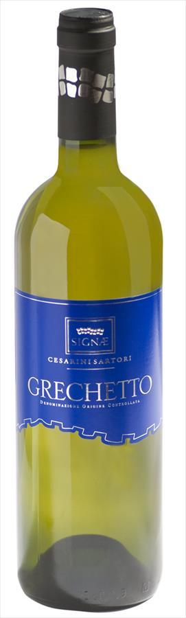 Grechetto IGT Umbria Bianco
