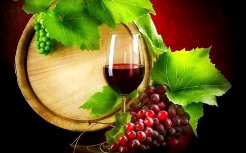 Vino sfuso rosso IGT Marche biologico bag in box - 3l