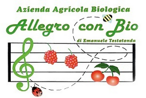 Allegro con Bio