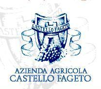 CASTELLO FAGETO