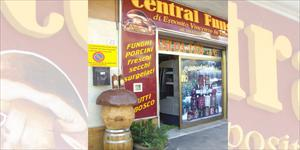 Central funghi