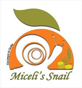Miceli s Snail