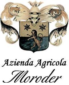 MORODER ALESSANDRO