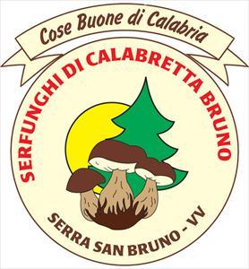 Serfunghi di Calabretta Bruno