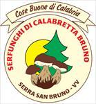Serfunghi di Calabretta Bruno - Serra San Bruno(VV)