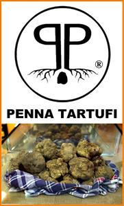 Penna Tartufi