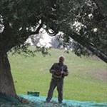 Azienda agricola Nuccelli Gilberto - Macerata(MC)