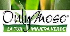 Consorzio Bambù Italia