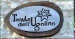 TENUTA DELL UGOLINO