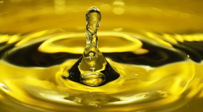 Vendita Olio Extravergine