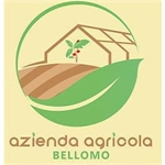 Azienda agricola Bellomo - Mazara del Vallo(TP)