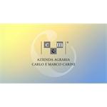 Carlo & Marco Carini Azienda Agraria - Perugia(PG)