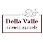 Della Valle - Mirabello Monferrato(AL)