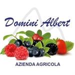 Domini Albert - Sauris(UD)