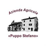 Puppo Stefano - Bosnasco(PV)