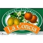 la Concia - Massa(MS)