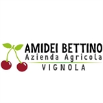 Amidei Bettino - Vignola(MO)