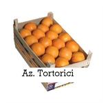 Azienda agrumicola Tortorici - Agrigento(AG)