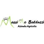 Balduzzi Massimo - Clusone(BG)
