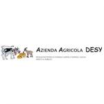 Desy - Vicenza(VI)