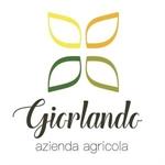 Azienda Agricola Giorlando - Grammichele(CT)