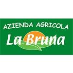 rimosso kosito La Bruna Di Piccirilli Alberto - Carunchio(CH)