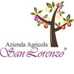 San Lorenzo - Campi Salentina(LE)