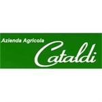 Cataldi - Priolo Gargallo(SR)