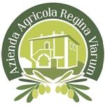 Regina Viarum - Roma(RM)