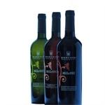 Bianchini Rossetti Winery - Carinola(CE)