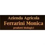 Ferrarini Monica - mirandola(MO)