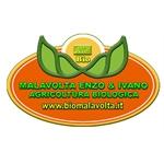 Agribiologica Malavolta - Massignano(AP)