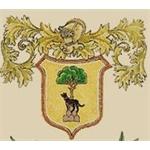 Buonamici - Fiesole(FI)