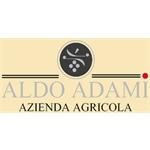 Adami Aldo E C. - Sommacampagna(VR)