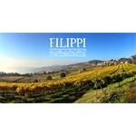 Filippi - Soave(VR)
