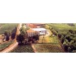 Azienda vinicola CasaBella - Castell'Arquato(PC)