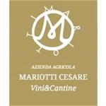 Cantine Mariotti - Montemaggiore al Metauro(PU)