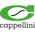 Cappellini S.N.C. Di Cappellini & C. - Ponte Stella(PT)