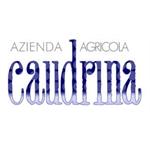 La Caudrina di Romano Dogliotti - Castiglione Tinella(CN)