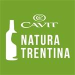 Cavit Sc - Trento(TN)