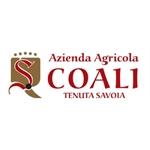 Coali - Tenuta Savoia - Sant'Ambrogio di Valpolicella(VR)