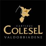 Colesel Spumanti S.R.L. - Valdobbiadene(TV)
