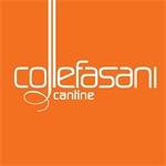 Cantine Collefasani - Mondragone(CE)