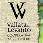 Cooperativa Agricola Vallata Di Levanto - Levanto(SP)