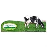 Cooperativa Agricola Campotenese - Morano Calabro(CS)