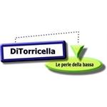 Rossolini - Sissa(PR)